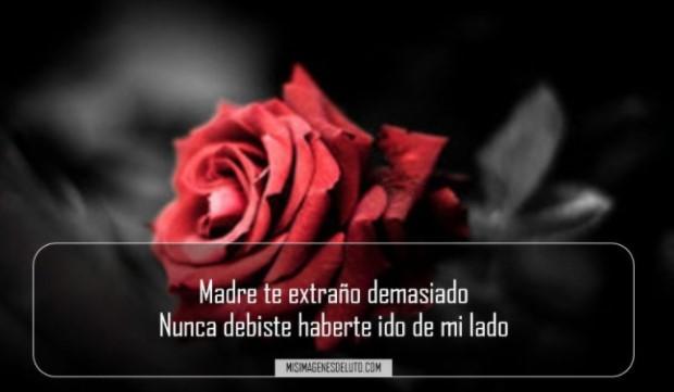 Nunca te olvidare madre querida