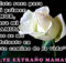 Por siempre en mi corazón mama