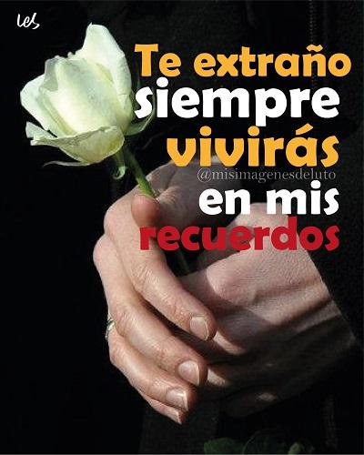 imagen de mano y flores de luto